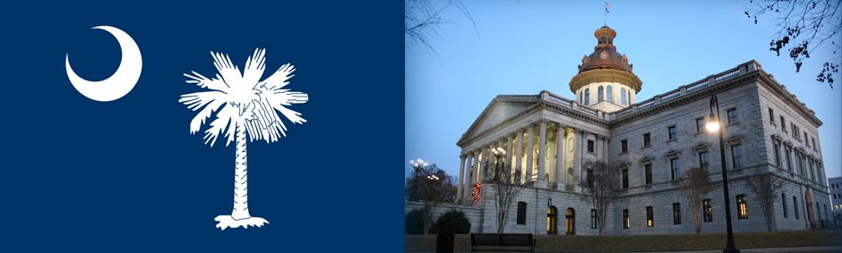 South Carolina Society of Plastic Surgeons - Columbia, SC